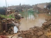 Sel nedeniyle ev ve ahırlar çöktü
