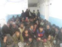 Van'da 54 göçmen yakalandı