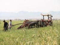 """Mardinli çiftçiler: """"Dünya Çiftçiler Günü'ne buruk girdik"""""""