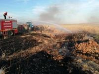 Çıkan yangında 30 dönüm arpa kül oldu