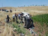 Feci kaza! Tarım işçilerini taşıyan kamyonet devrildi: 35 yaralı