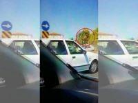 Otomobilin çarptığı at metrelerce uçtu