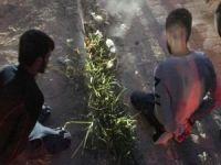 Nusaybin'de 2 PKK'lı yakalandı