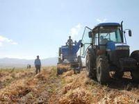 Bitlis'te üretilen fasulye 57 ile gönderiliyor