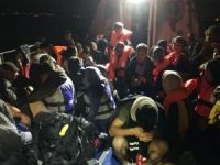 225 düzensiz göçmen yakalandı