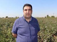 Çiftçi dertli: Pamuk fiyatları dibe vurdu