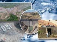 Ergani Barajı'nda mutlu son