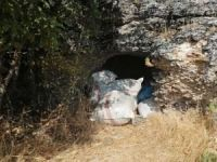 Diyarbakır'da 158 kilo esrar ele geçirildi