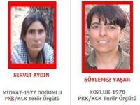 Kırmızı kategoride aranan 2 PKK'lı etkisiz hale getirildi
