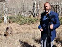Muhabire ayı saldırısı kamerada