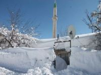 Bitlis'te araçlar ve tek katlı evler kara gömüldü