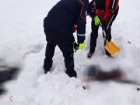 Van'da 7 erkek cesedi bulundu