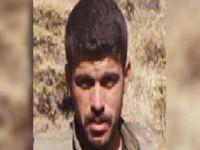 Turuncu Liste'de aranan PKK'lı öldürüldü