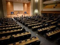 BM, Afrika kökenlilere yönelik ırkçılığı kınadı