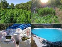 Diyarbakır'da 7 milyon 571 bin kök keneviri ve bir ton 600 kilo esrar ele geçirildi