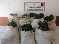 Diyarbakır'da 176 kilogram esrar ele geçirildi
