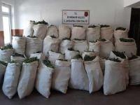 Diyarbakır'da 756 kilo esrar ele geçirildi