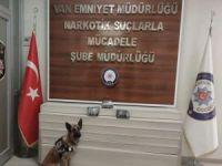 Van'da uyuşturucu operasyonunda bir kişi tutuklandı