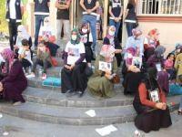 Bakan Soylu: Evlat nöbetinde 16'ncı kavuşma gerçekleşecek