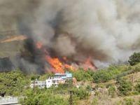 Hatay'daki orman yangını yerleşim yerlerini tehdit ediyor
