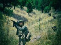 Barış Pınarı bölgesine 2 PKK/YPG'li öldürüldü