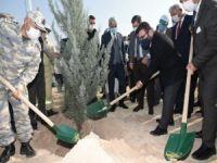 """Gür: """"11 Kasım Ağaçları Bahane Eden Zihniyete Önemli Bir Mesajdır"""""""