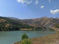 Bingöl'de araç baraja uçtu: Bir kayıp