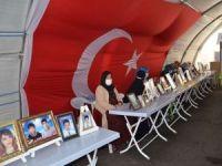 Evlatlarına kavuşmayı bekleyen aileler HDP'den çocuklarını istiyor