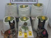 Bingöl'de 218 kilo esrar ele geçirildi