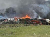 İstanbul'da ahır yangını: 7 hayvan telef oldu
