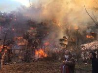 Artvin'deki yangında 50'ye yakın ev alev aldı