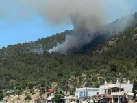 Muğla'daki orman yangını yerleşim alanlarına yaklaştı