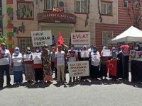 Evlat nöbeti tutan ailelerden Milletvekili Beştaş'a tepki
