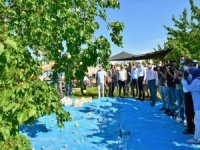 Malatya'da kayısı hasadı devam ediyor