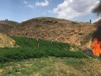 PKK operasyonunda yüklü miktarda uyuşturucu ele geçirildi