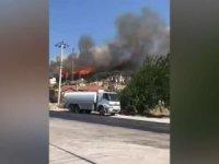 Foça'daki yangına çocukların neden olduğu açıklandı