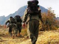 Silopi'de 4 PKK'lı teslim oldu