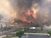 AFAD: Manavgat'taki yangından 30 kişi etkilendi