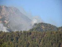 Adana'da bir yangın kontrol altına alındı