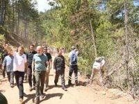 Karayolları ekipleri, yangının yerleşim yerleri ile bağlantısını kesmek için geniş yollar açıyor