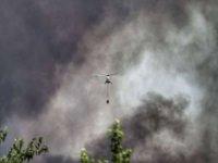 44 ilde çıkan 197 orman yangınından 185'i kontrol altına alındı