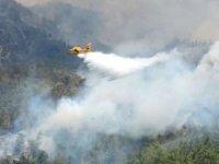 12 bölgede yangın söndürme çalışmaları devam ediyor