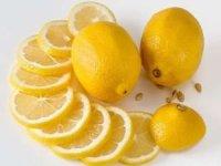 Limon ihracatında artış