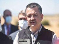Tarım ve Orman Bakanı Pakdemirli 4 ildeki orman yangının kontrol altına alındığını açıkladı