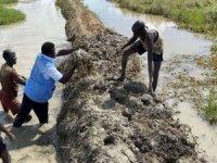 Sudan'da sel nedeniyle 43 kişi hayatını kaybetti