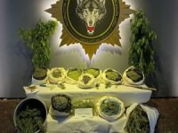Malatya'da İHA destekli uyuşturucu operasyonu