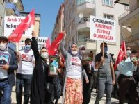 Çocukları PKK tarafından kaçırılan Vanlı annelerin eylemi 20'inci haftasında