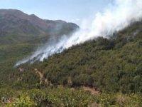 Antalya'da yıldırım düşmesi sonucu çıkan yangına müdahale ediliyor