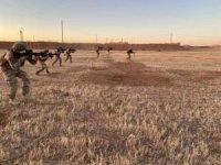 Fırat Kalkanı ve Zeytin Dalı bölgesinde 8 PKK'lı öldürüldü
