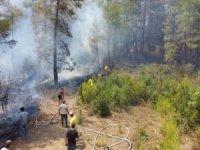 6 orman yangını kontrol altına alındı